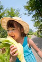 トウモロコシをかじる女の子