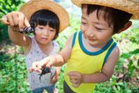 カブトムシを持つ兄と妹 22946002707| 写真素材・ストックフォト・画像・イラスト素材|アマナイメージズ