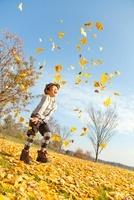 落ち葉の公園でイチョウの葉を投げる男の子
