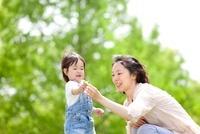 新緑の公園でタンポポを持って母親と遊ぶ女の子 22946002929| 写真素材・ストックフォト・画像・イラスト素材|アマナイメージズ