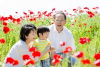 花の咲く公園で遊ぶ孫と祖父母