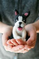 フェルト製の犬を持つ女性の手