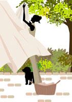 屋外で洗濯物を干す女性と犬 イラスト 22987000043| 写真素材・ストックフォト・画像・イラスト素材|アマナイメージズ