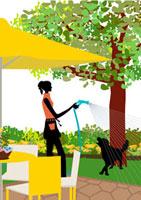庭で水をまく女性と戯れる犬 22987000066| 写真素材・ストックフォト・画像・イラスト素材|アマナイメージズ