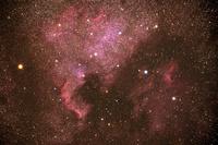 はくちょう座の北アメリカ星雲とペリカン星雲