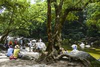 モスマン渓谷でくつろぐ観光客,世界遺産「湿潤熱帯地域」