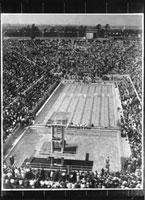 「第11回ベルリンオリンピック大会」 水泳競技