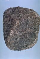 凝灰質砂岩