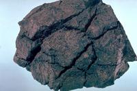 パン皮状火山弾