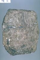 橄欖岩 23018001752| 写真素材・ストックフォト・画像・イラスト素材|アマナイメージズ