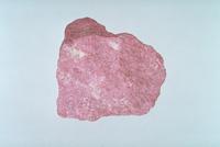 桃れん石 23018001920| 写真素材・ストックフォト・画像・イラスト素材|アマナイメージズ