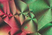 ビタミンC の結晶