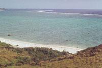 さんご礁 23018002125| 写真素材・ストックフォト・画像・イラスト素材|アマナイメージズ