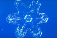 雪の結晶 23018002582| 写真素材・ストックフォト・画像・イラスト素材|アマナイメージズ