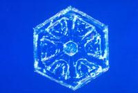 雪の結晶 23018002583| 写真素材・ストックフォト・画像・イラスト素材|アマナイメージズ
