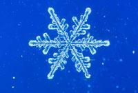 雪の結晶 23018002586| 写真素材・ストックフォト・画像・イラスト素材|アマナイメージズ