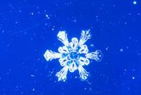 雪の結晶 23018002588| 写真素材・ストックフォト・画像・イラスト素材|アマナイメージズ