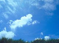 雲 23018002817| 写真素材・ストックフォト・画像・イラスト素材|アマナイメージズ