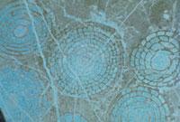 フズリナ 23018002945| 写真素材・ストックフォト・画像・イラスト素材|アマナイメージズ