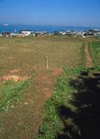 活断層(阪神大震災) 23018003024| 写真素材・ストックフォト・画像・イラスト素材|アマナイメージズ