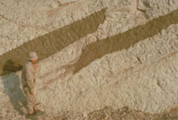 断層 23018003030| 写真素材・ストックフォト・画像・イラスト素材|アマナイメージズ