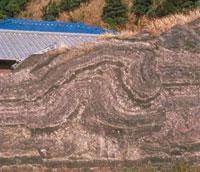 河原の石(大井川中流)