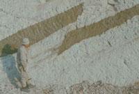 断層 23018003135| 写真素材・ストックフォト・画像・イラスト素材|アマナイメージズ