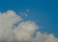 月(夕方)