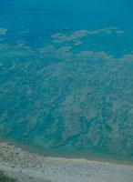 サンゴ礁 23018003166| 写真素材・ストックフォト・画像・イラスト素材|アマナイメージズ