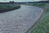 川の増水 23018003320| 写真素材・ストックフォト・画像・イラスト素材|アマナイメージズ