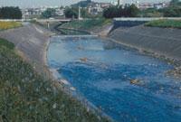 川の減水 23018003322| 写真素材・ストックフォト・画像・イラスト素材|アマナイメージズ