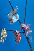 ミノムシ(ミノガ) 23018011969| 写真素材・ストックフォト・画像・イラスト素材|アマナイメージズ
