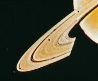 土星の環(リング)