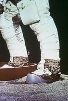 訓練(アポロ11号)