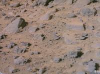火星の表面