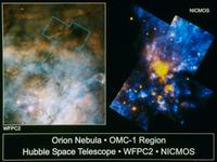 オリオン大星雲と生まれた星(右) 23018049054| 写真素材・ストックフォト・画像・イラスト素材|アマナイメージズ