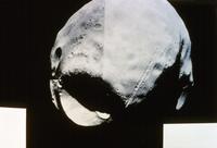 火星の衛星フォボス 23018049061| 写真素材・ストックフォト・画像・イラスト素材|アマナイメージズ