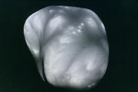 火星の衛星ダイモス 23018049062| 写真素材・ストックフォト・画像・イラスト素材|アマナイメージズ