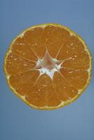 ウンシュウミカン 23018050498| 写真素材・ストックフォト・画像・イラスト素材|アマナイメージズ