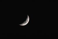 月齢4・6