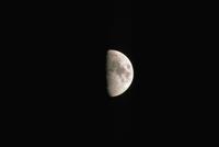 月齢8・3