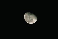 月齢18・5(1990/11/6) 23018050990| 写真素材・ストックフォト・画像・イラスト素材|アマナイメージズ