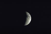 月食(10)
