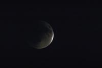 月食(15)