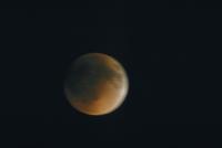 月食(19)