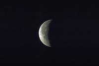 月食(26)