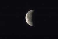 月食(27)