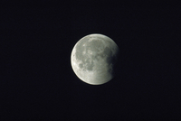 月食(34)
