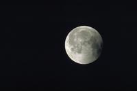 月食(36)