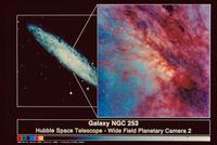 渦巻銀河NGC253